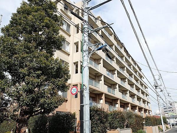 橋 内科 中村